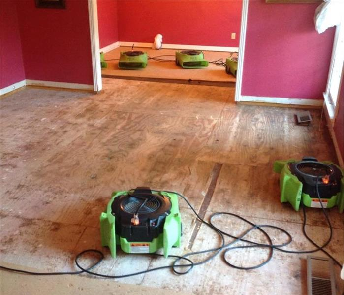 Water Damage to Hard Wood Floors  After