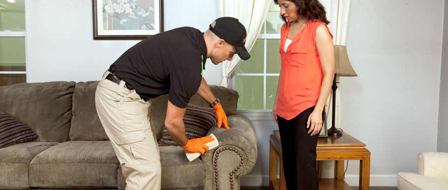 Brewton, AL carpet upholstery cleaning